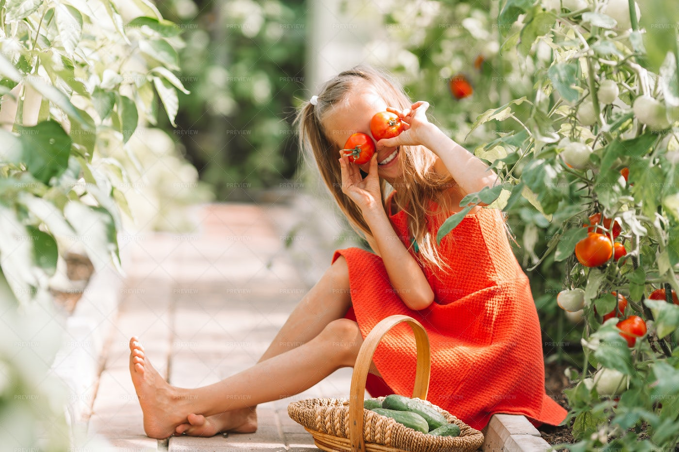 Silly Kid In Greenhouse Garden: Stock Photos