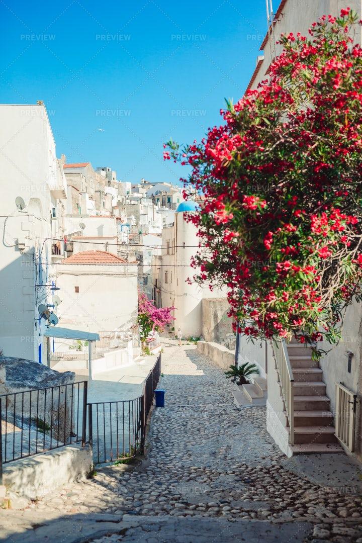 A Narrow Picturesque Street: Stock Photos