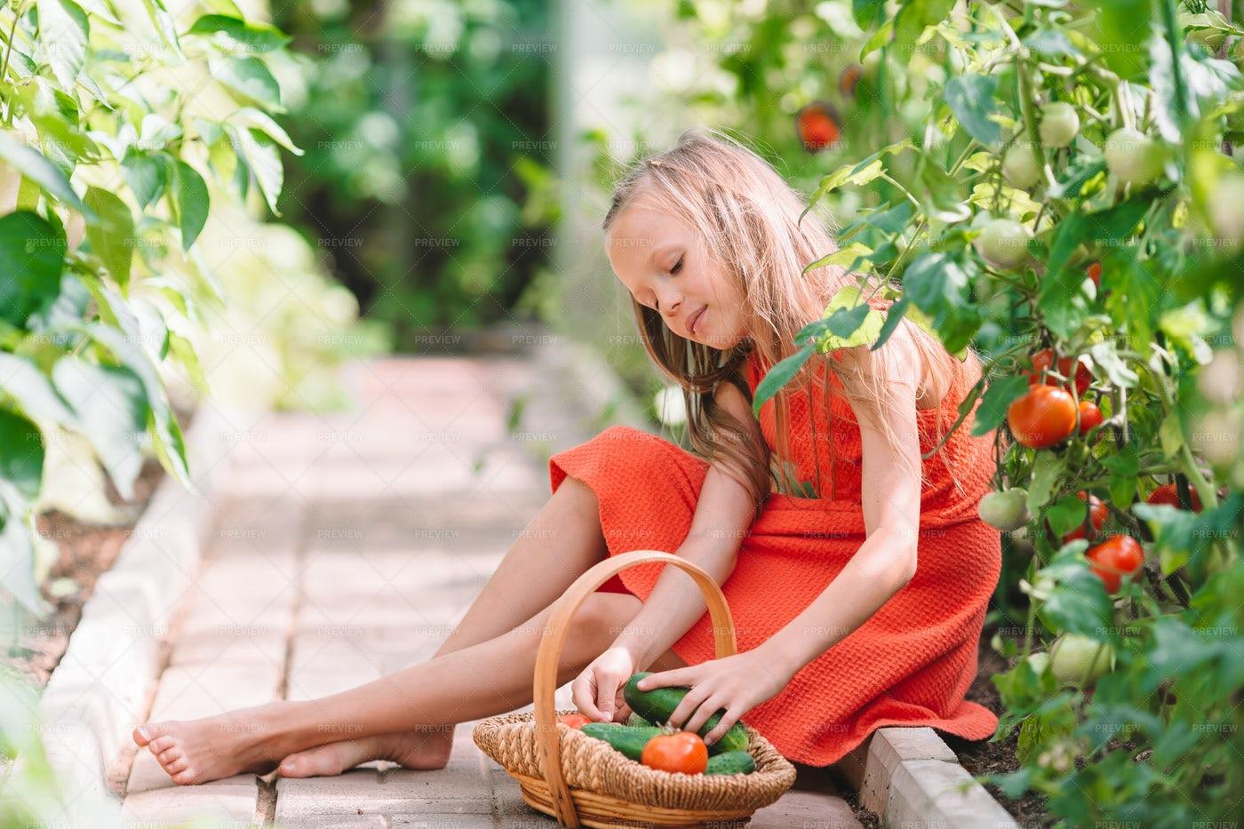 Helping In The Garden: Stock Photos