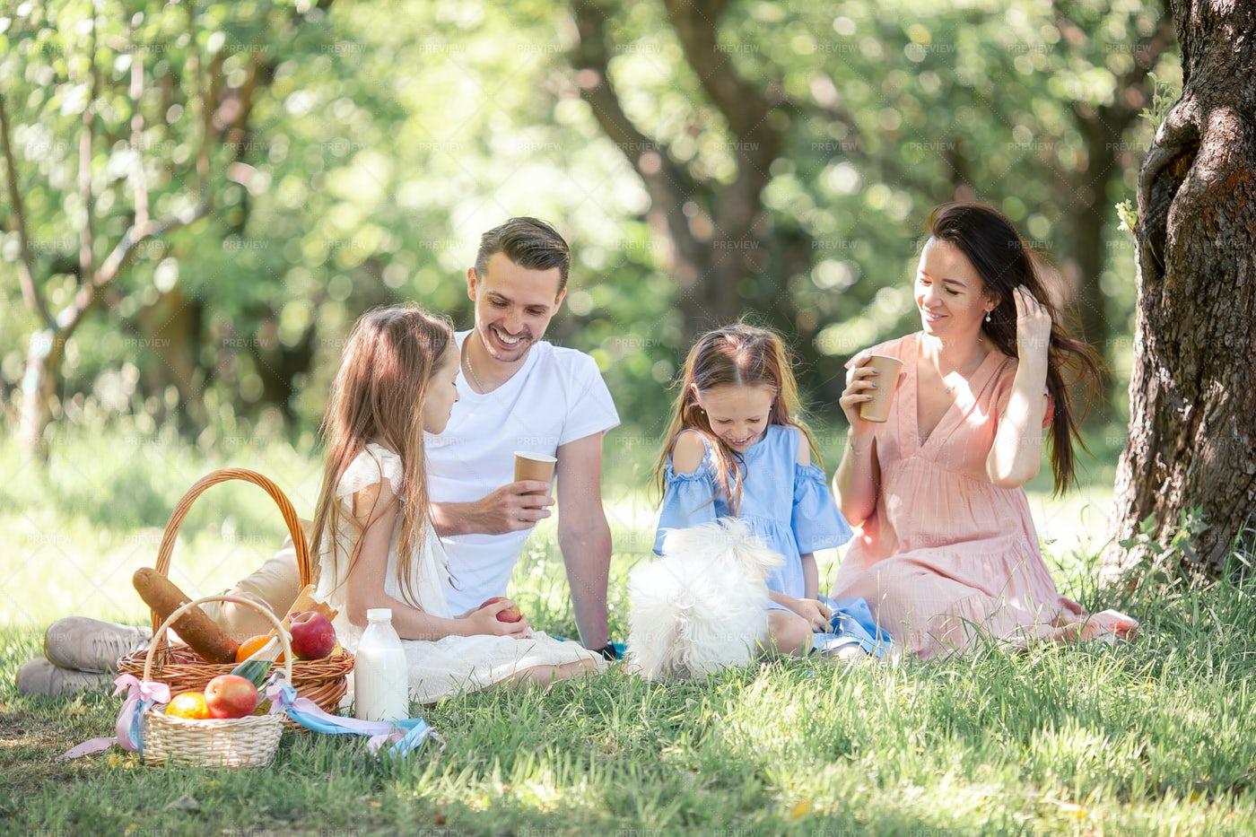 Happy Family Has A Picnic: Stock Photos