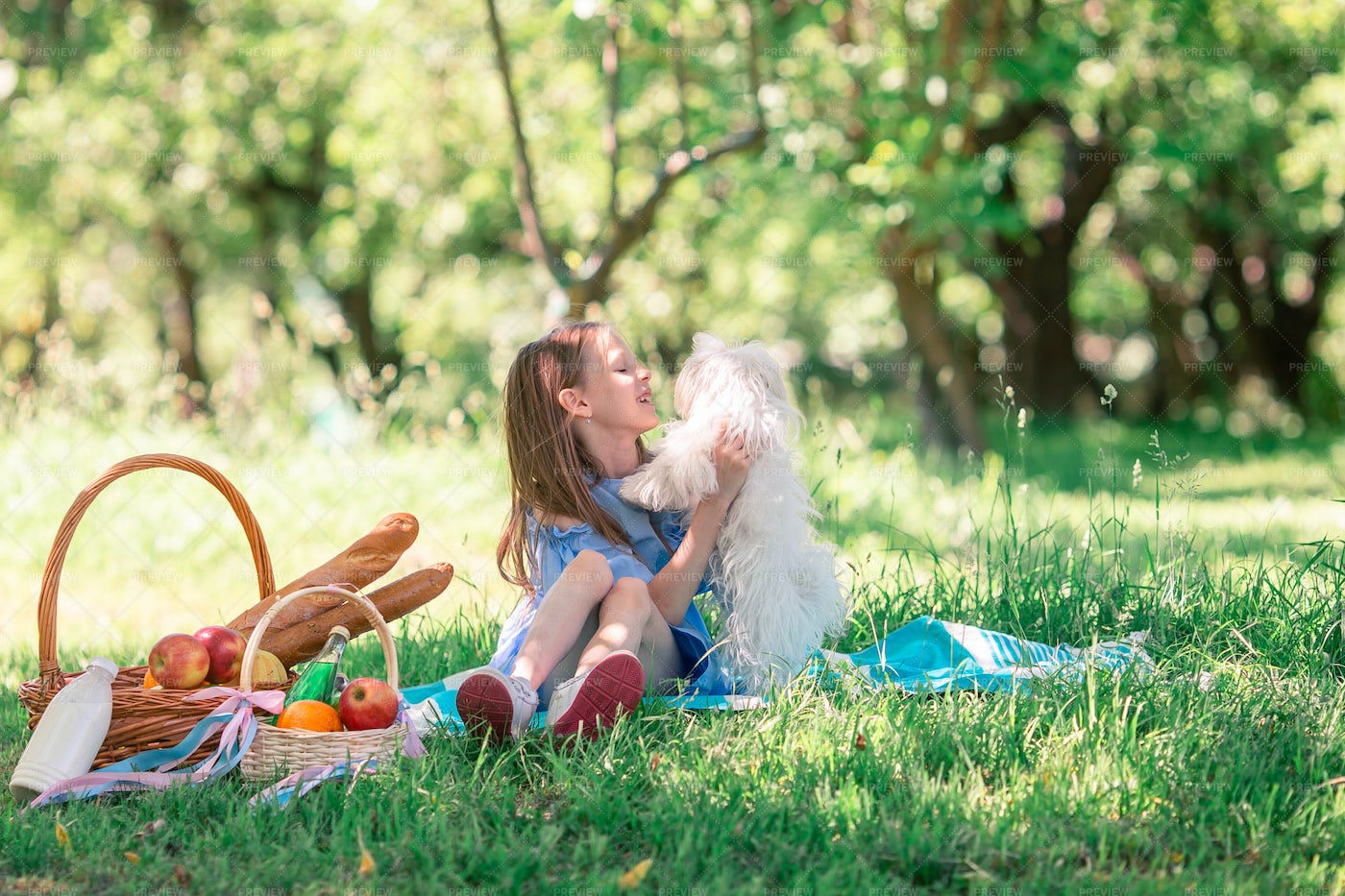 Child Playing With Puppy In Park: Stock Photos