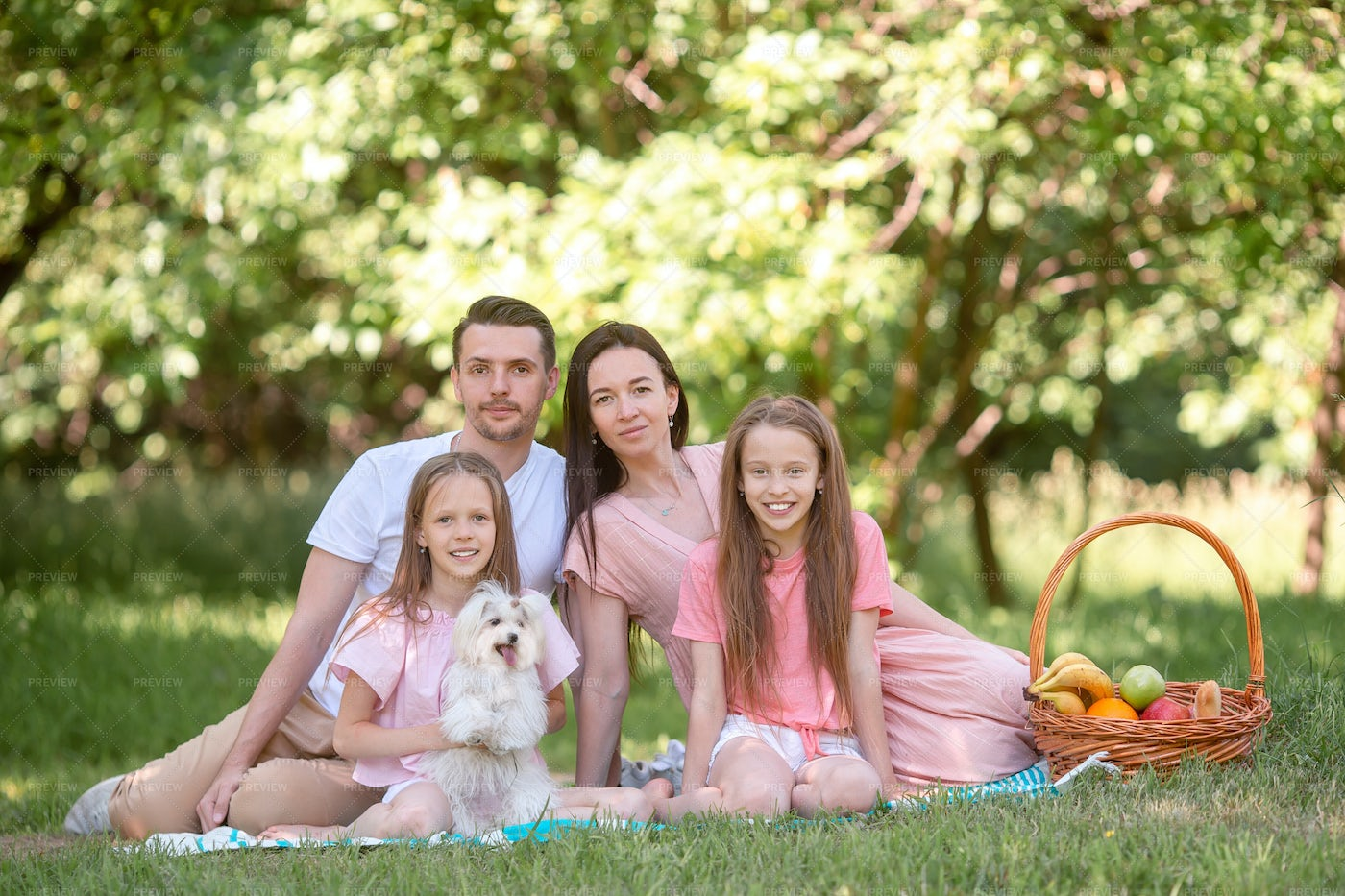 Family In The Park: Stock Photos