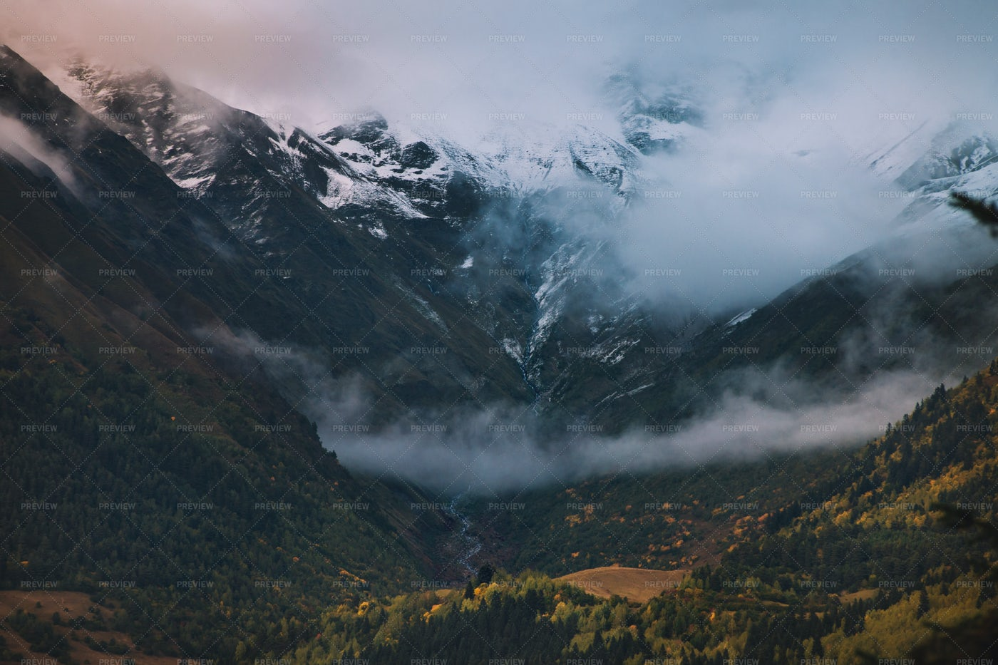 Evening Fog In The Mountains: Stock Photos