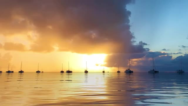 Sunset Water: Stock Motion Graphics