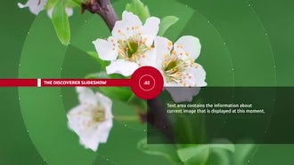 Discovery Slideshow: After Effects Templates