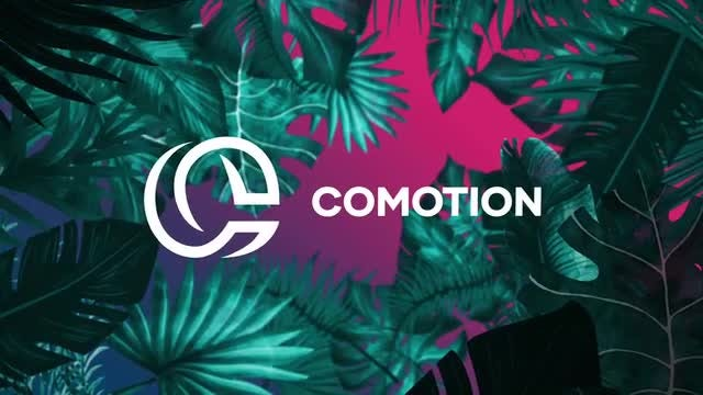 Night Tropical Logo: After Effects Templates
