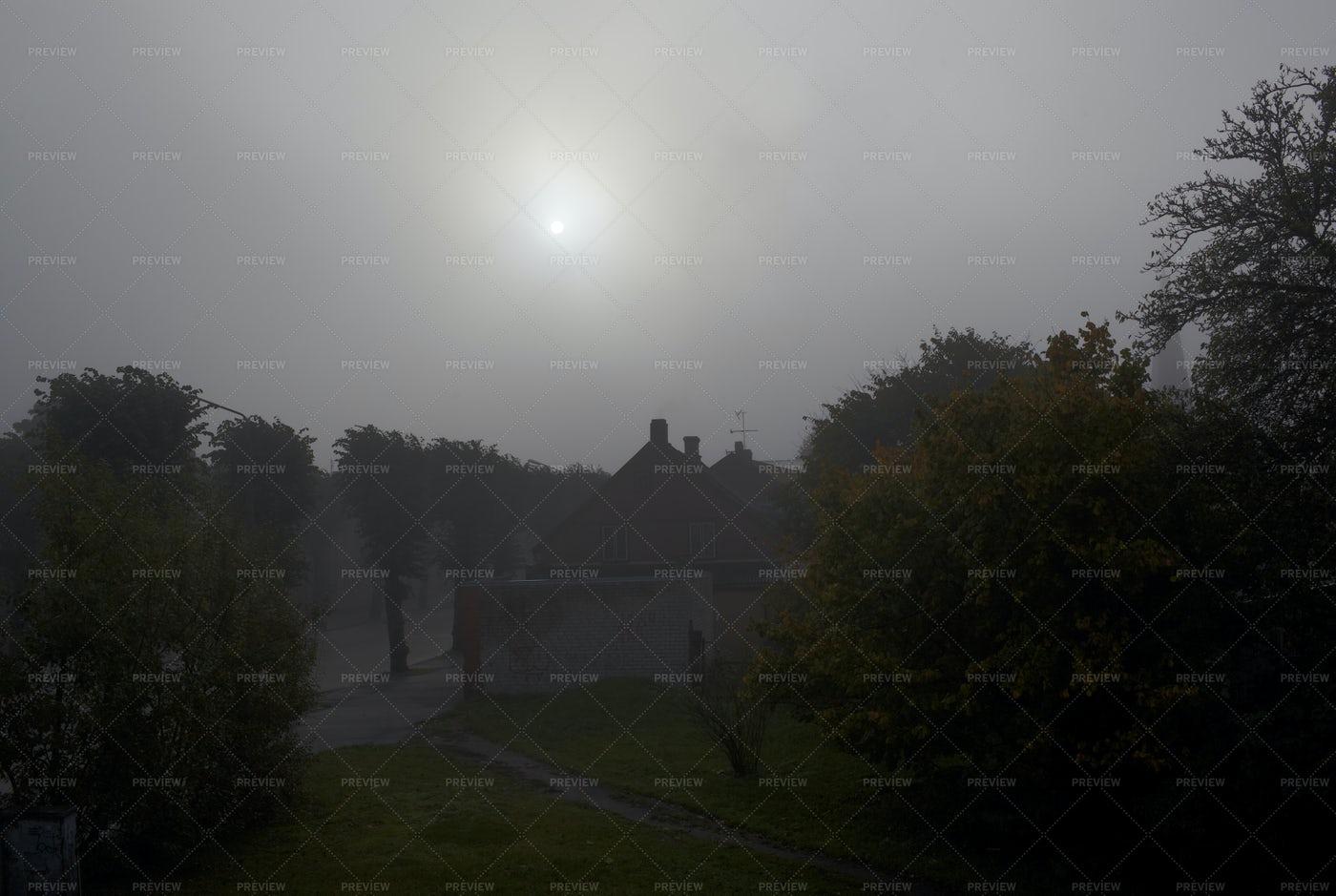 Fog In The Morning: Stock Photos