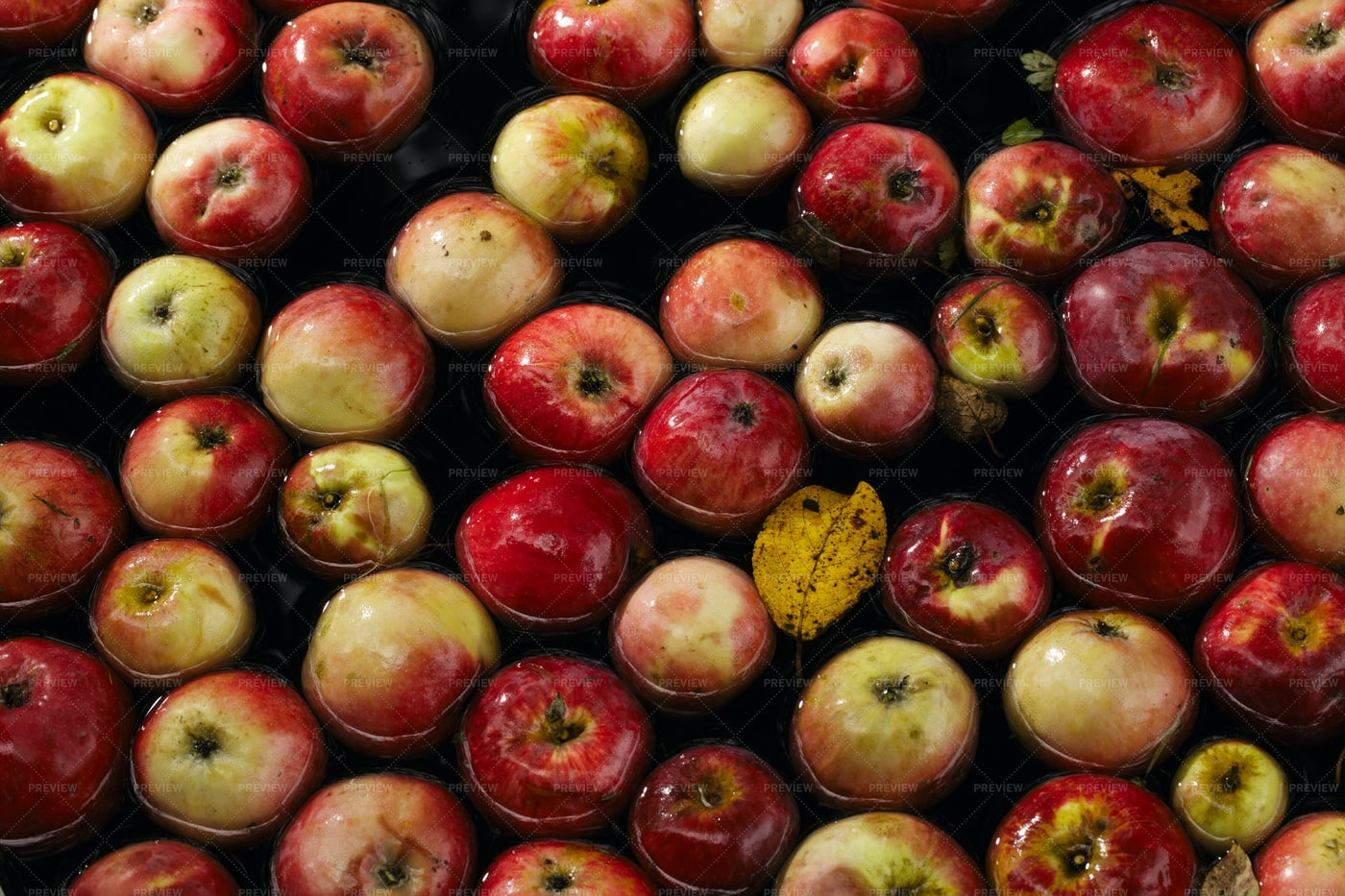 Apples In Water: Stock Photos