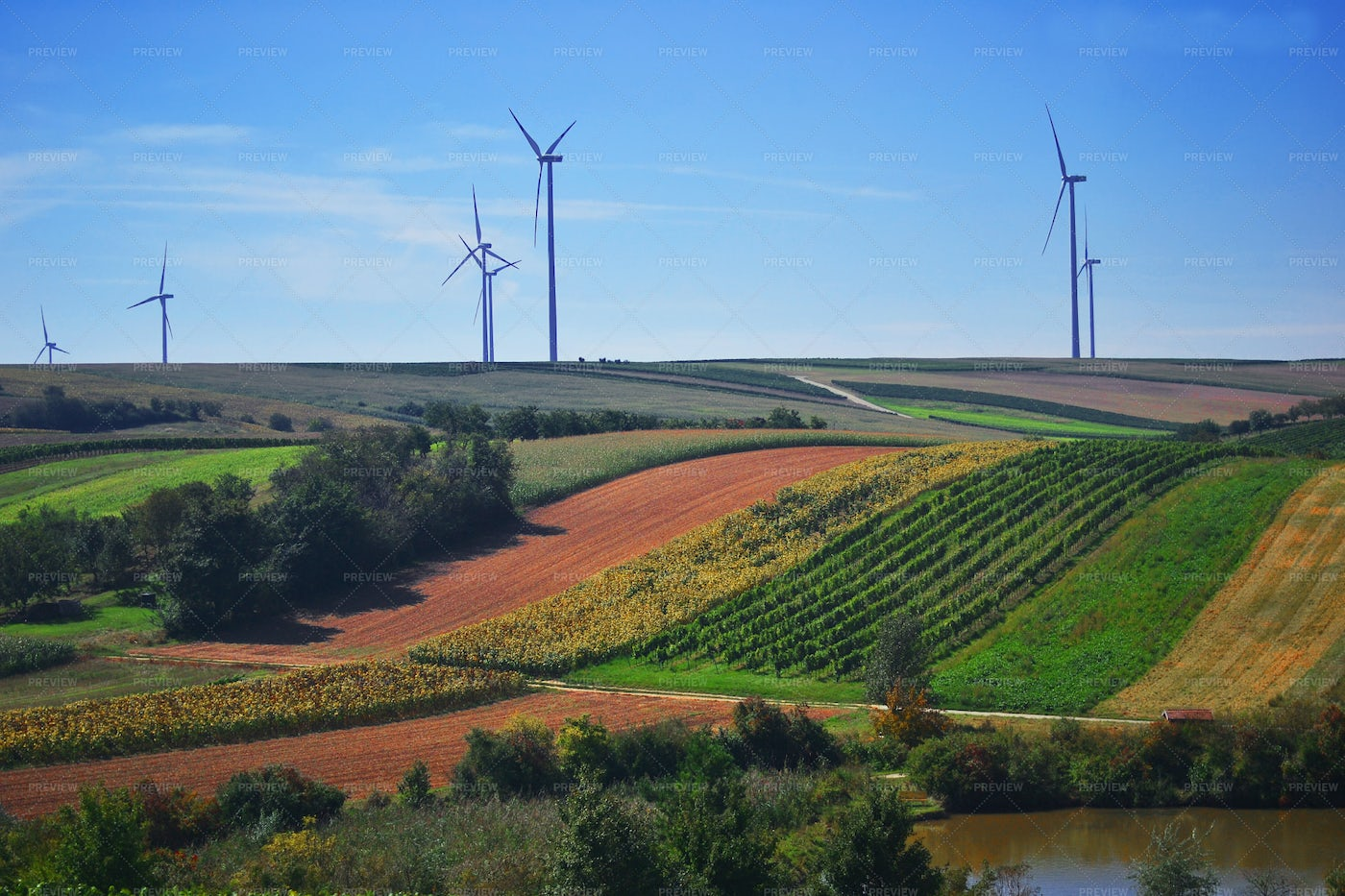 Wind Turbines In A Field: Stock Photos