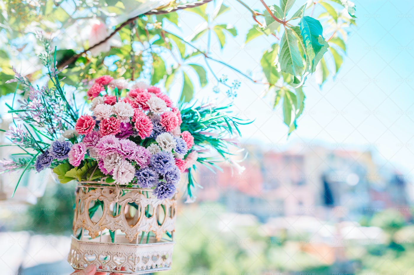 Flowers Hang From A Tree: Stock Photos