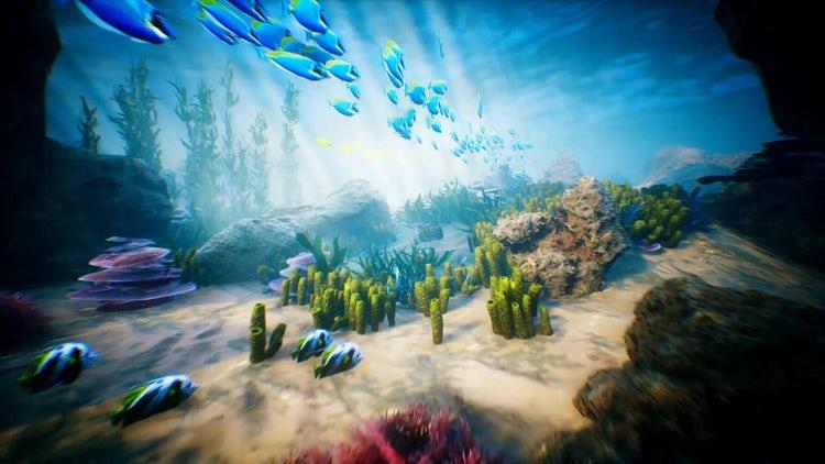 Ocean Life: Motion Graphics