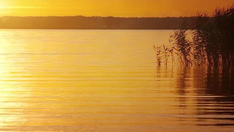 Sunset Landscape: Stock Video
