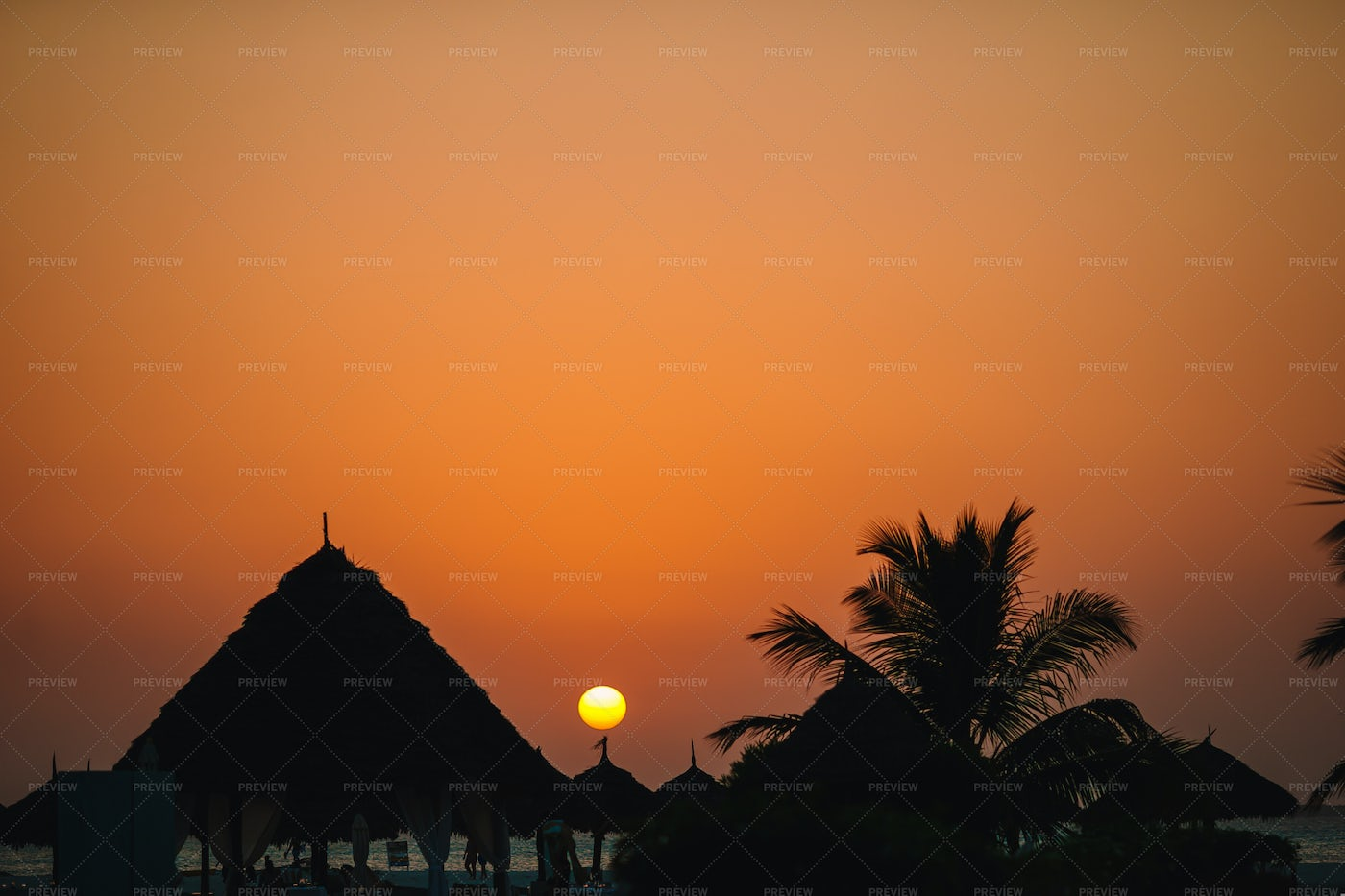 Golden Sunset In The Tropic: Stock Photos