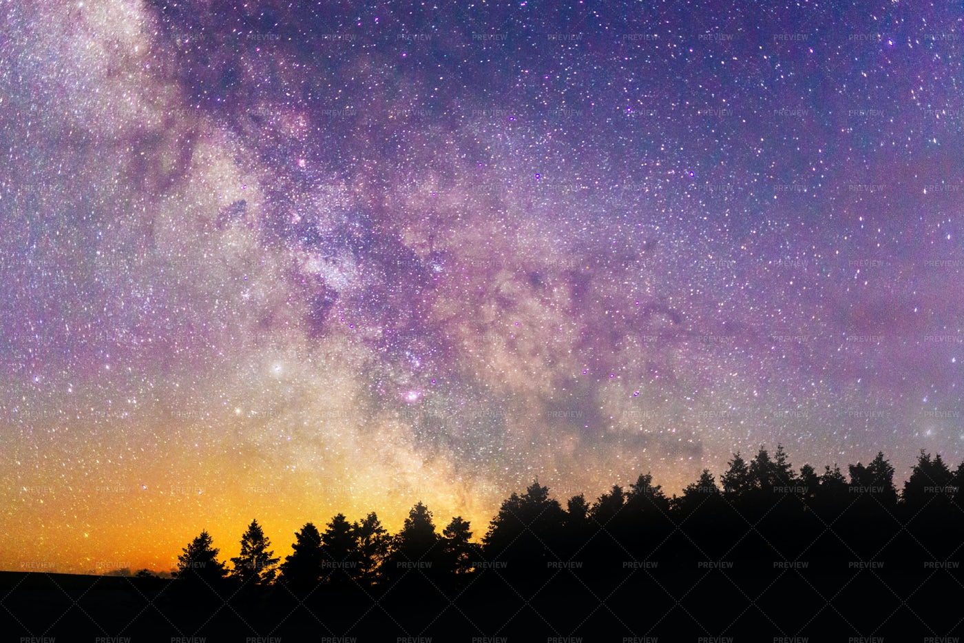 Milky Way Over Forest: Stock Photos