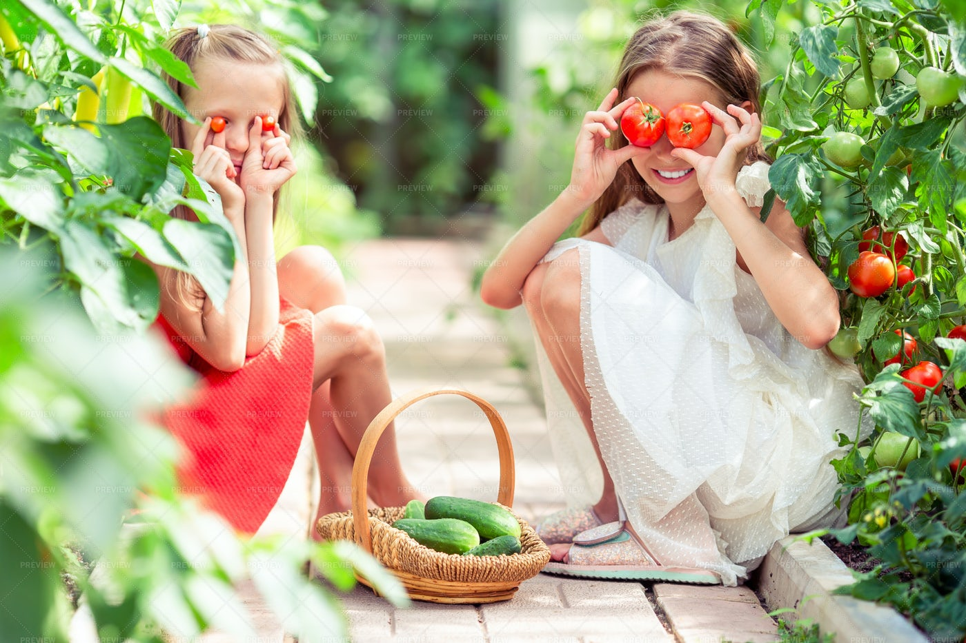 Girls Playing With Tomatoes: Stock Photos