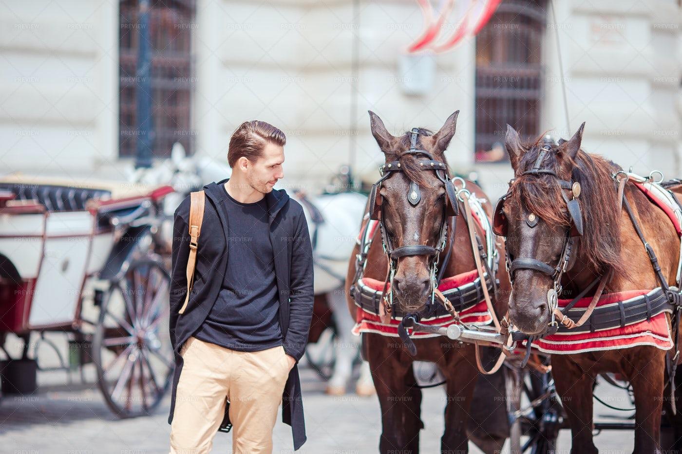 Tourist Man And Horses: Stock Photos