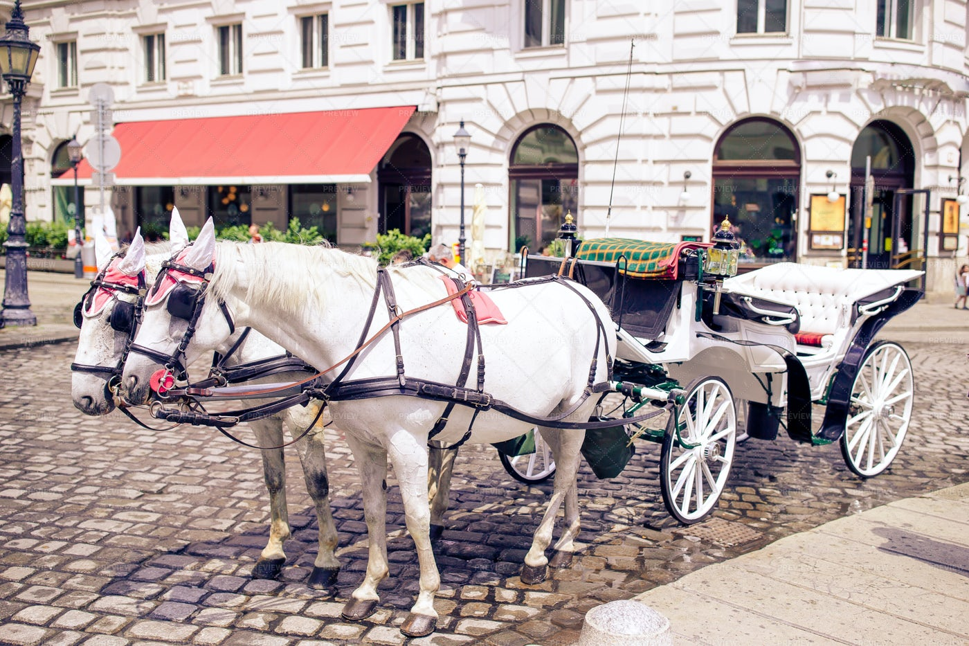 Horse And Carriage In Vienna: Stock Photos