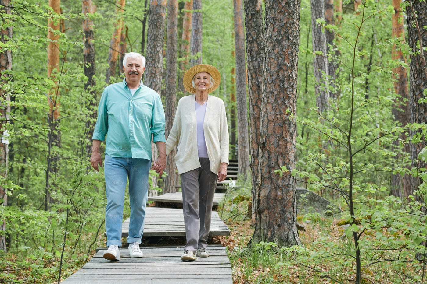 Walk In The Forest: Stock Photos