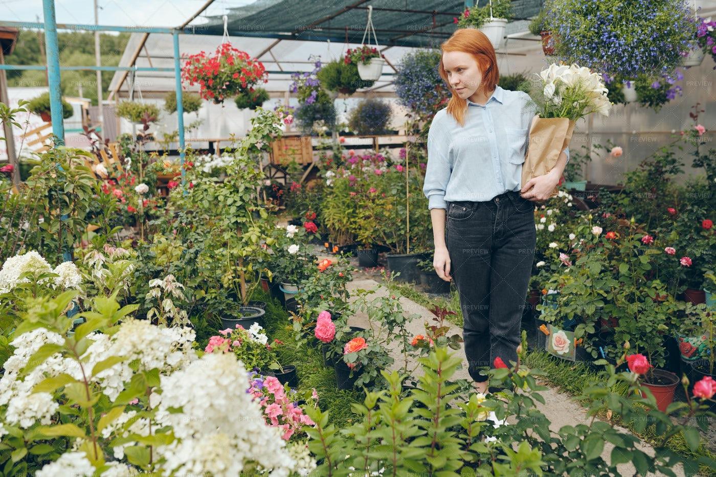 Redhead Girl Choosing Flowers In...: Stock Photos