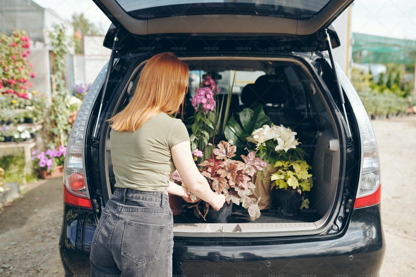 Loading Flowers Into Car: Stock Photos