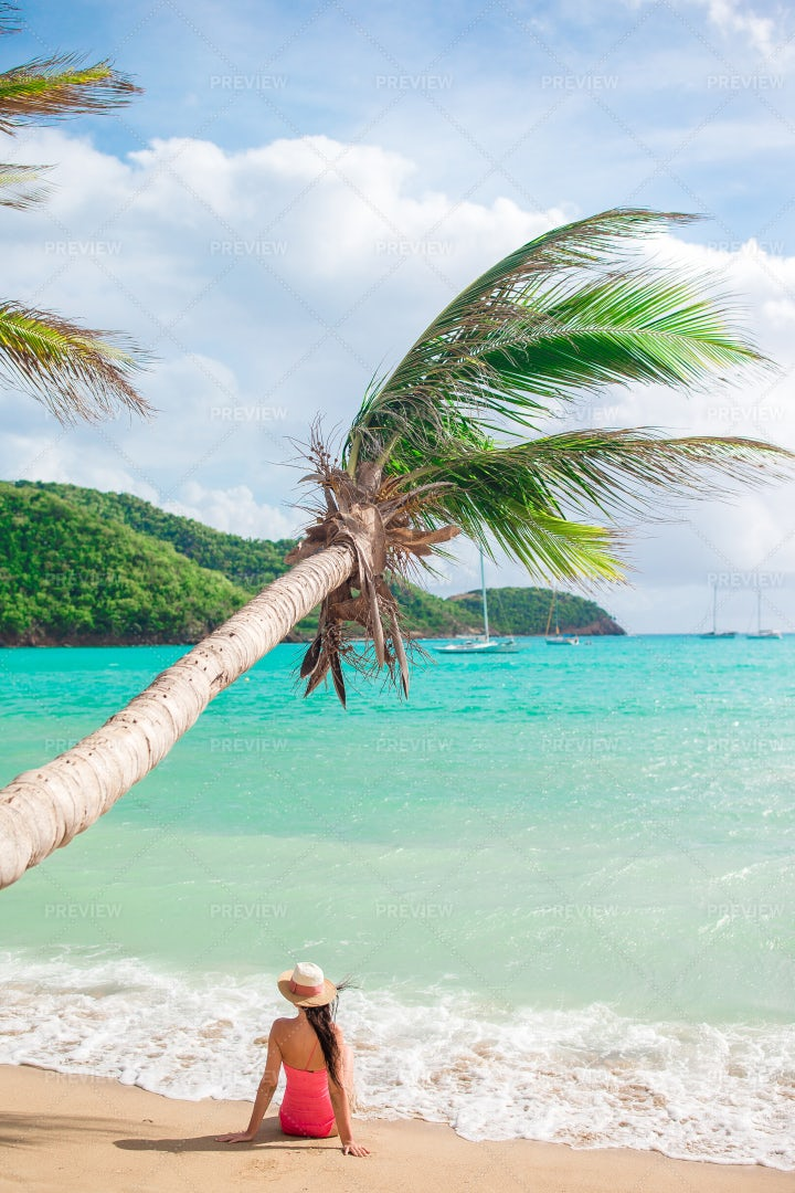 Under The Palm Tree: Stock Photos