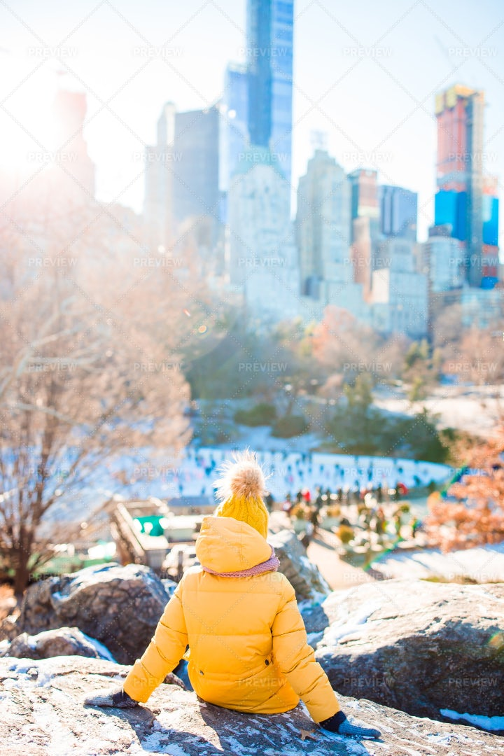View Of Central Park: Stock Photos