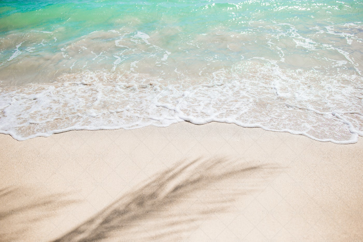 Waves Roll On The Sand: Stock Photos