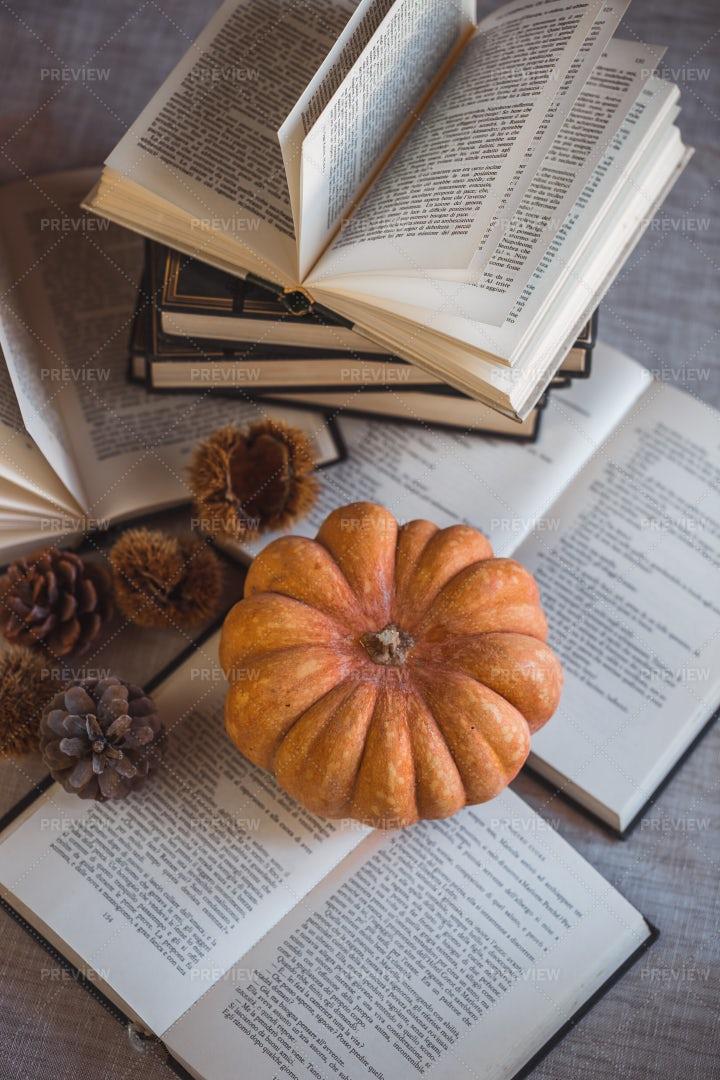 Autumn Reading: Stock Photos