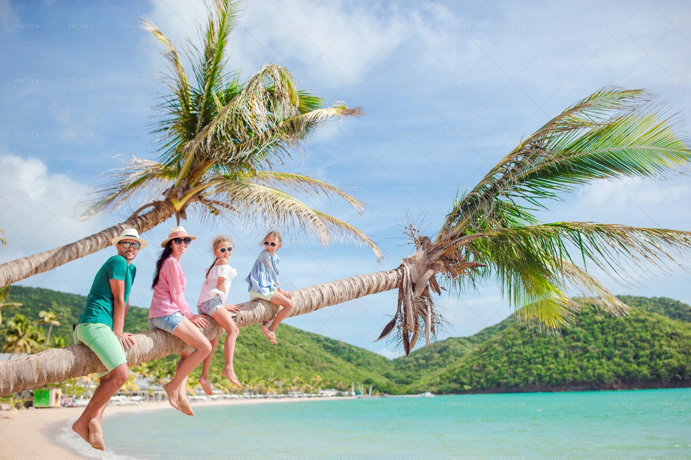 Family On The Palm Tree: Stock Photos
