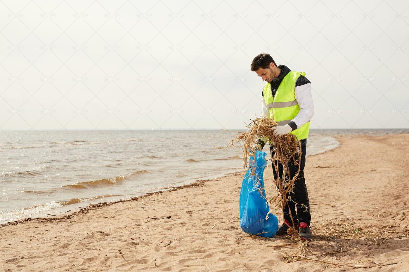 Volunteer On The Beach: Stock Photos