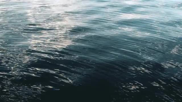 Calm Sea Surface: Stock Video