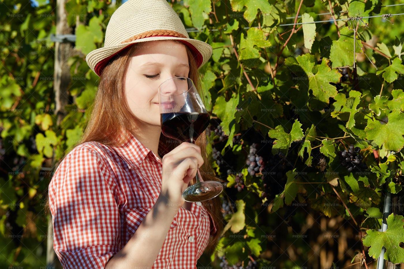 Vintner Drinks Wine: Stock Photos