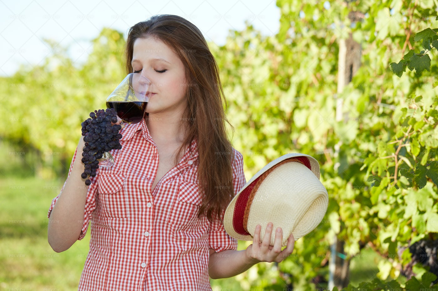 Young Vintner: Stock Photos