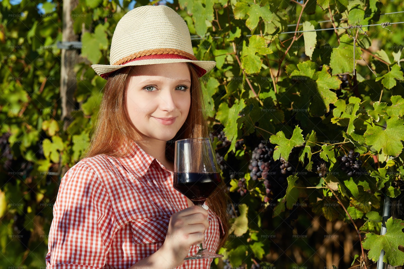 Wine From Vineyard Grapes: Stock Photos