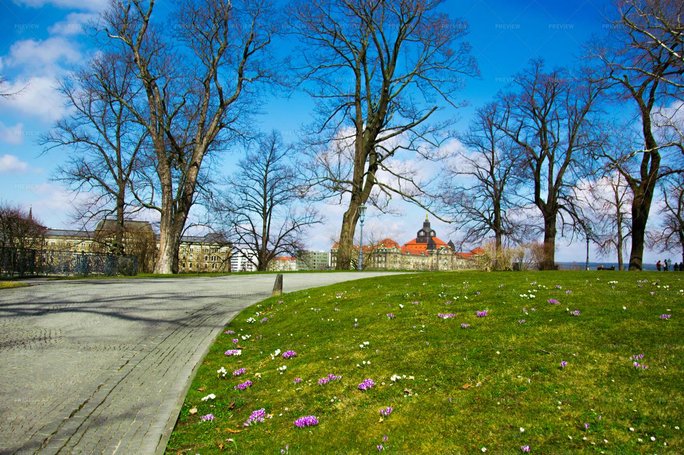 Garden In Drezden: Stock Photos