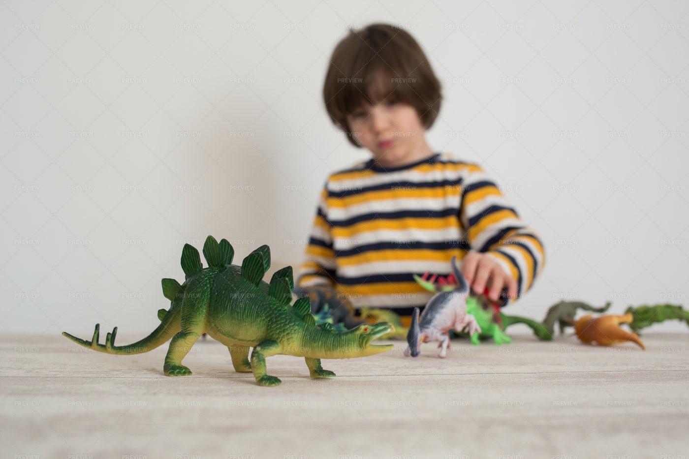 Boy Plays With Dinosaurs: Stock Photos