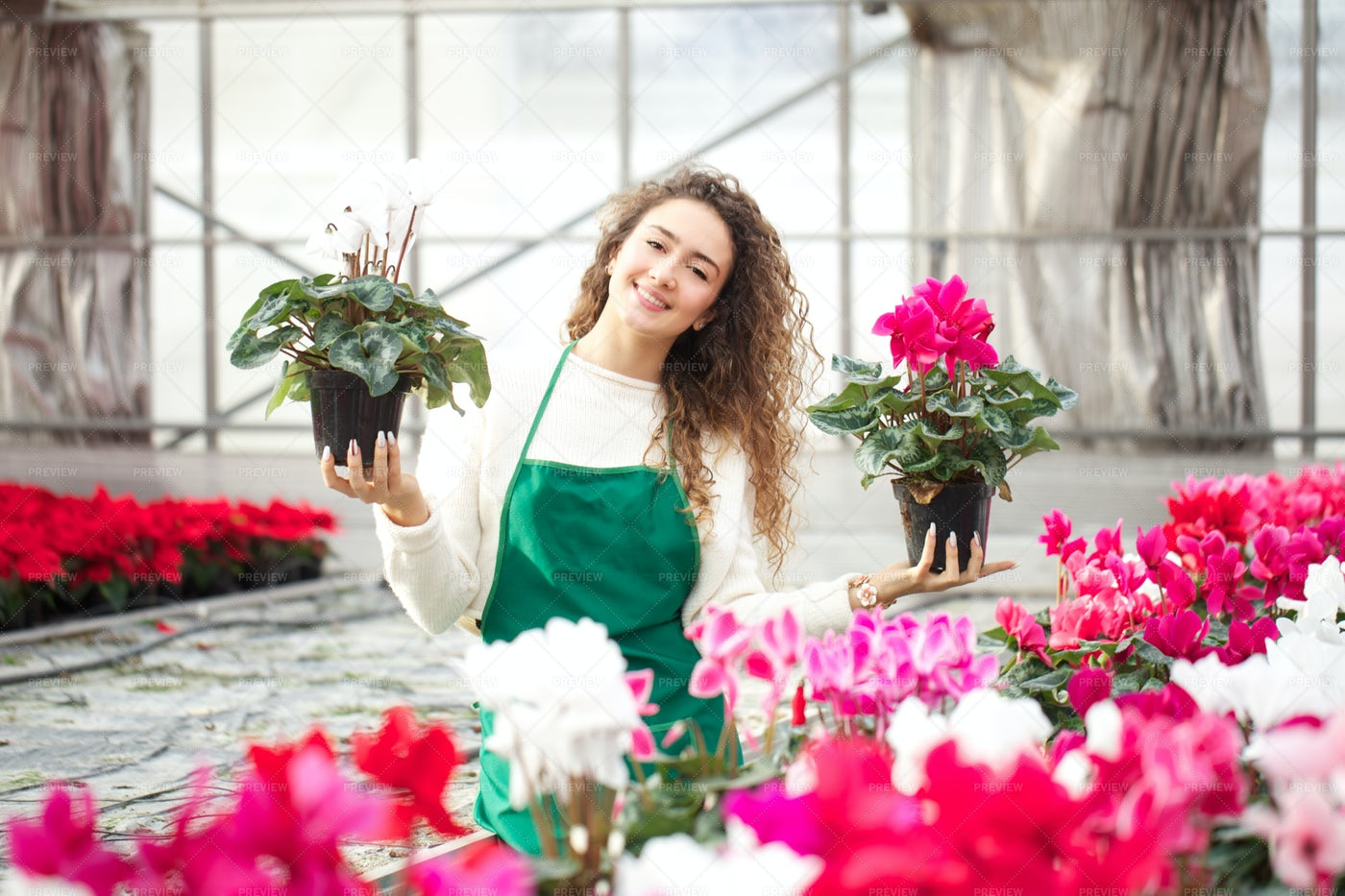 Woman Holds Potted Plants: Stock Photos