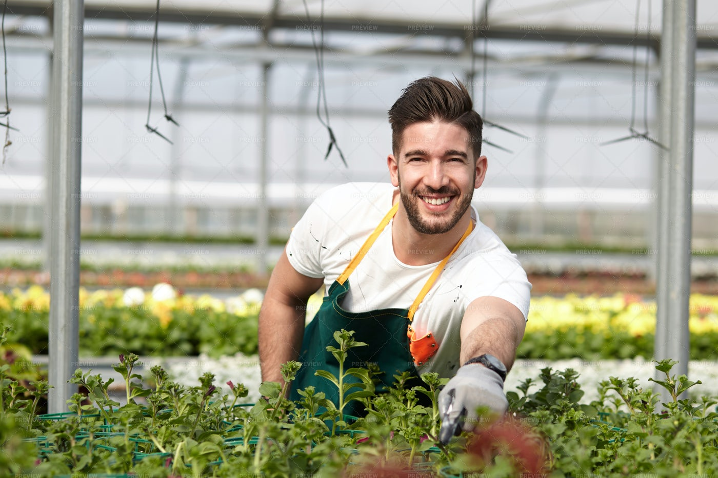 Happy Male Gardener: Stock Photos