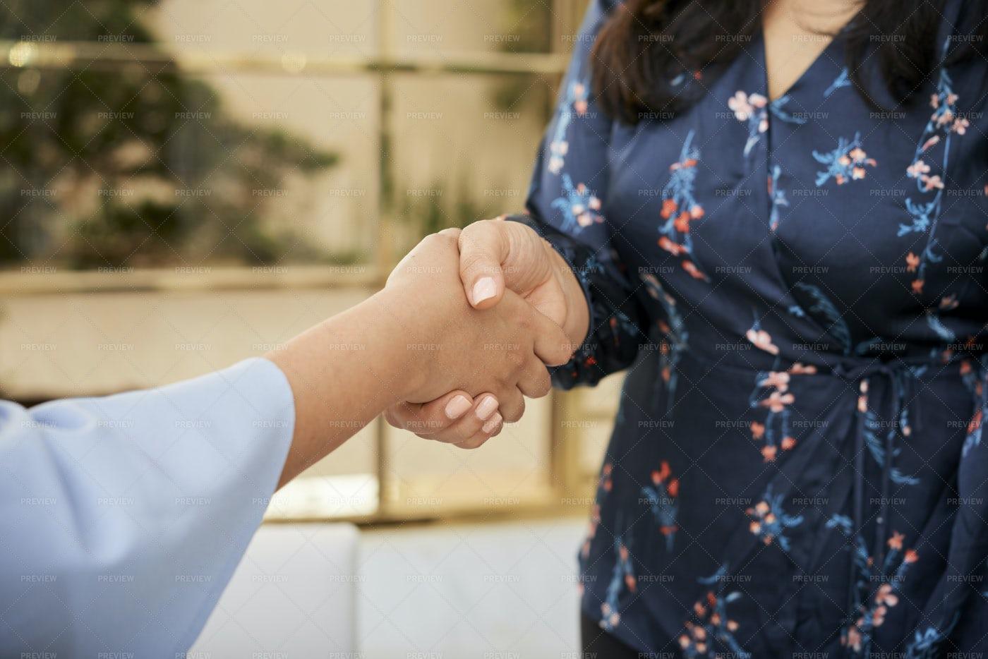 Handshake Of Business Women: Stock Photos
