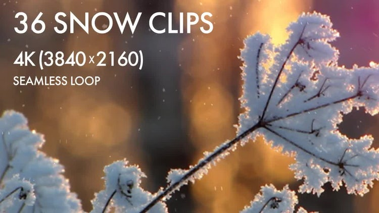 36 Realistic Snow Loops (4K): Stock Motion Graphics