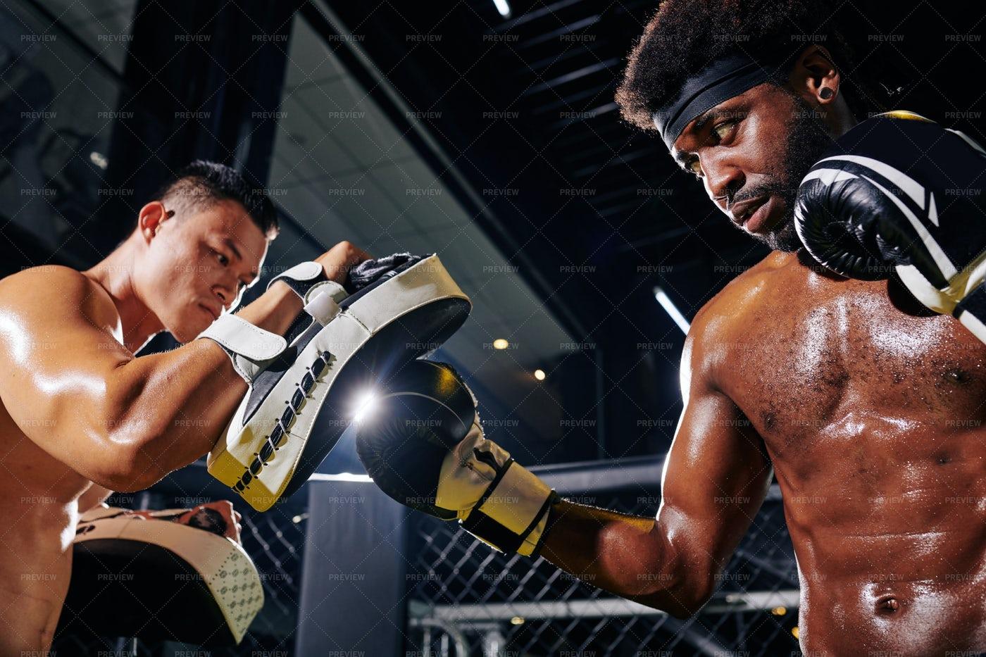 Boxer Punching Focus Mitts: Stock Photos