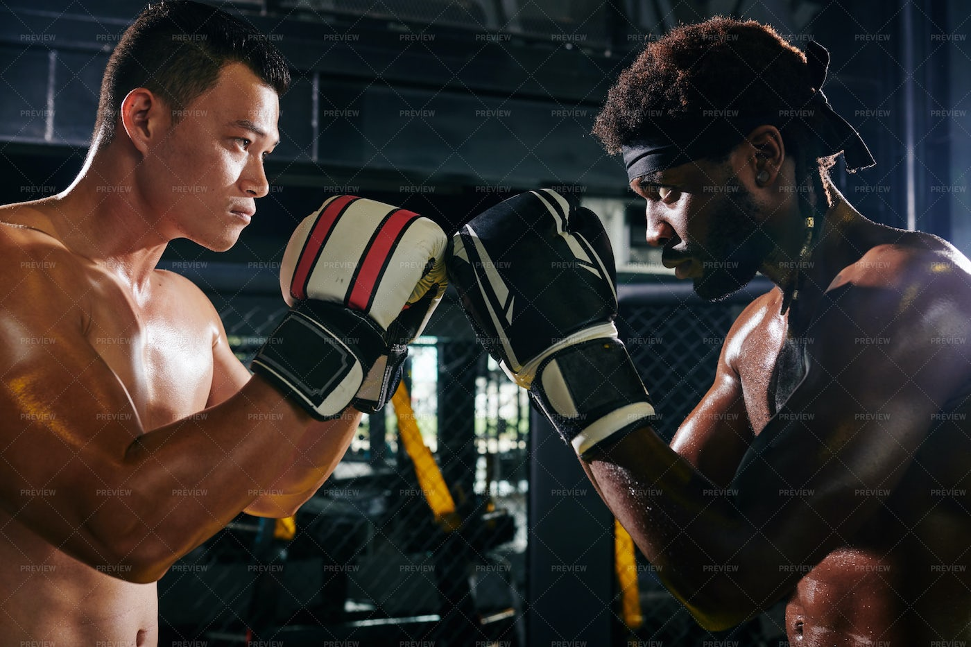 Muay Thai Competition: Stock Photos