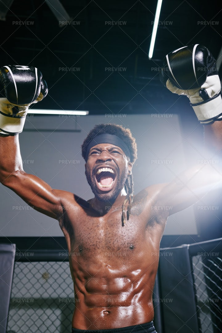 Boxer Celebrating Victory: Stock Photos