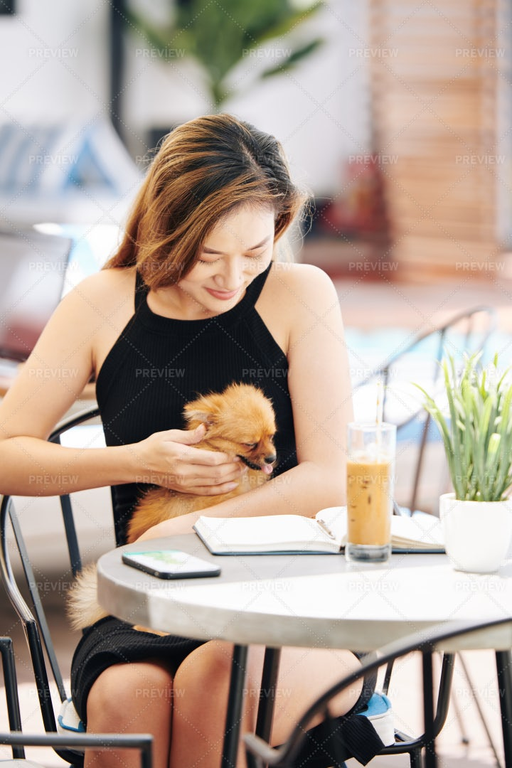 Young Woman Petting Small Dog: Stock Photos