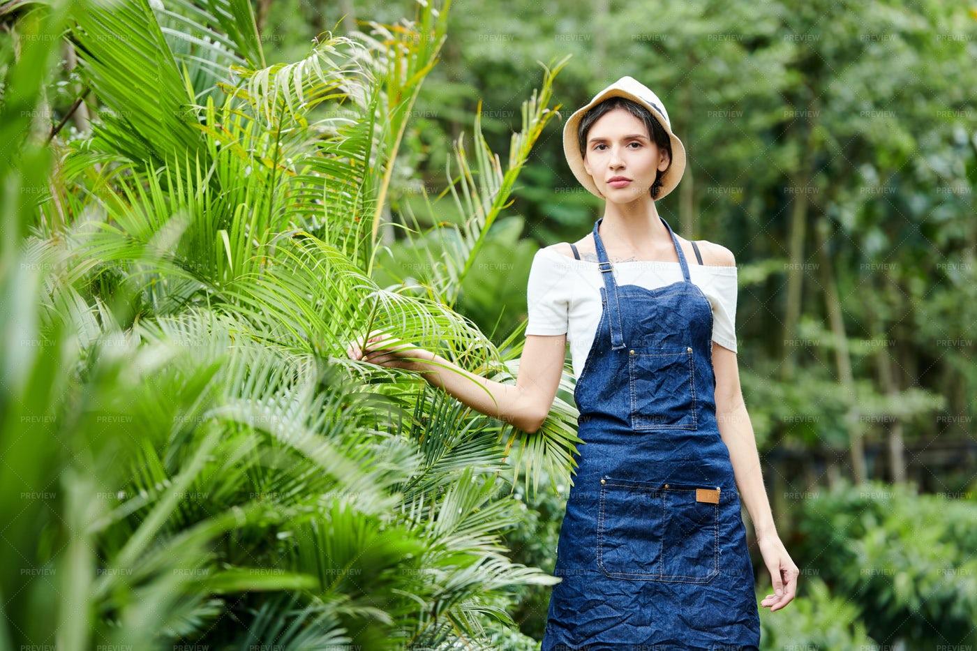 Worker Checking Plans In Garden: Stock Photos
