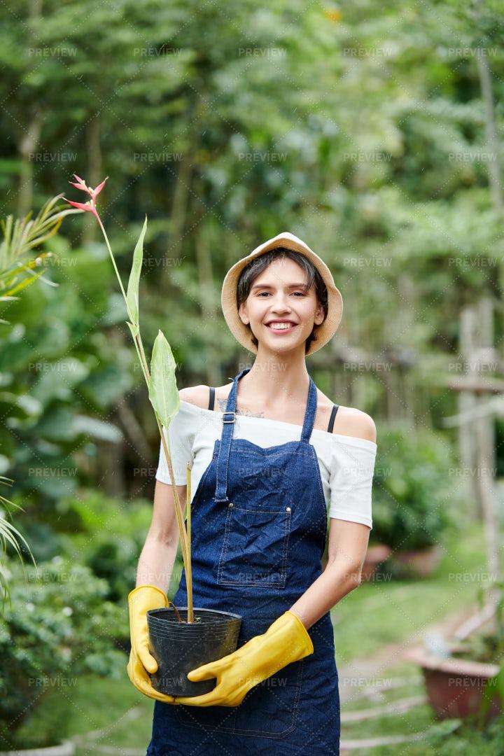 Garden Worker Carrying Flower Pot: Stock Photos