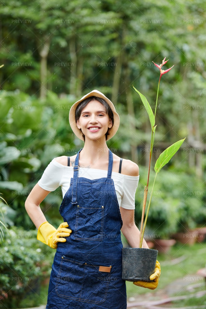 Gardener Posing With Flower Pot: Stock Photos