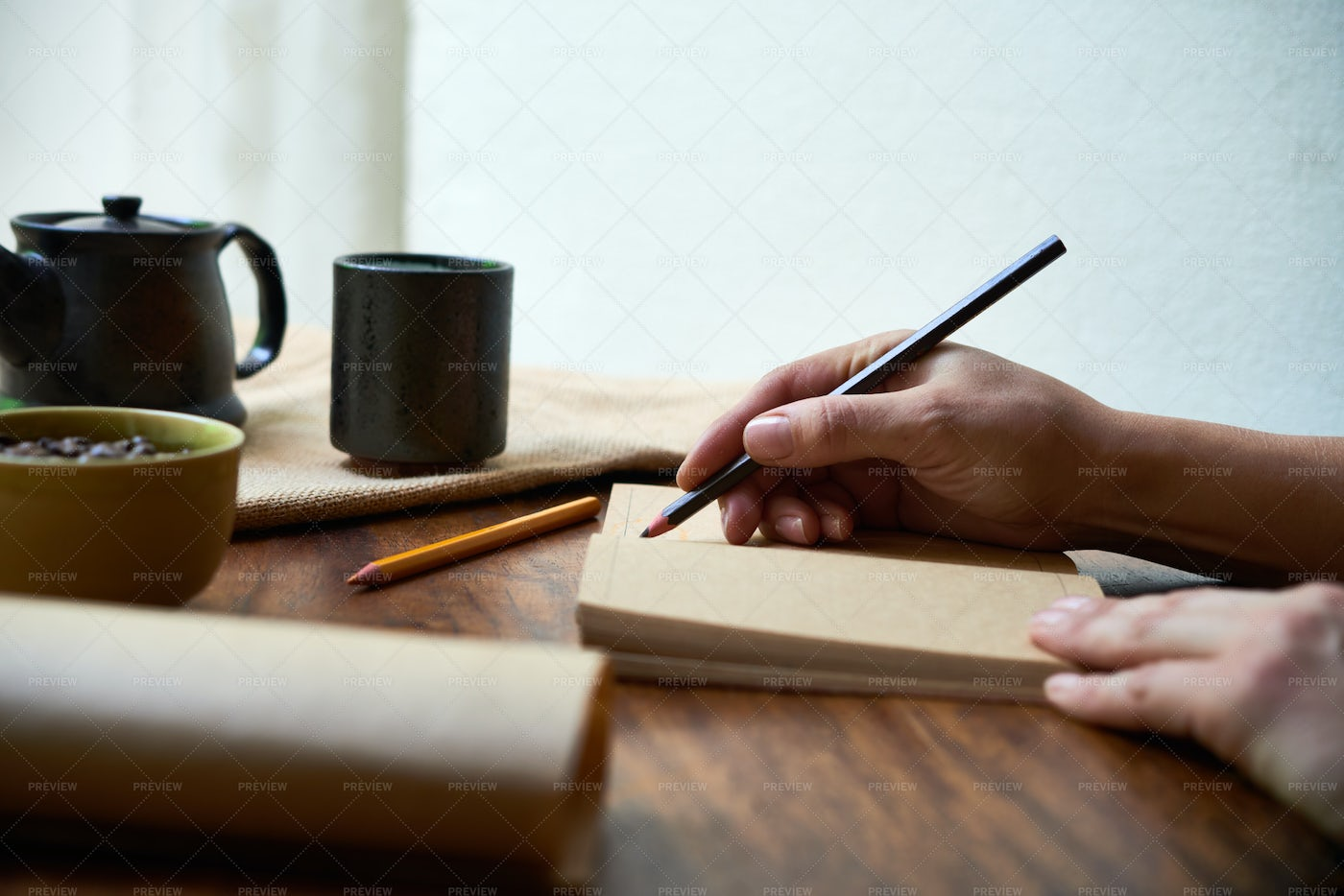 Woman Writing In A Diary: Stock Photos