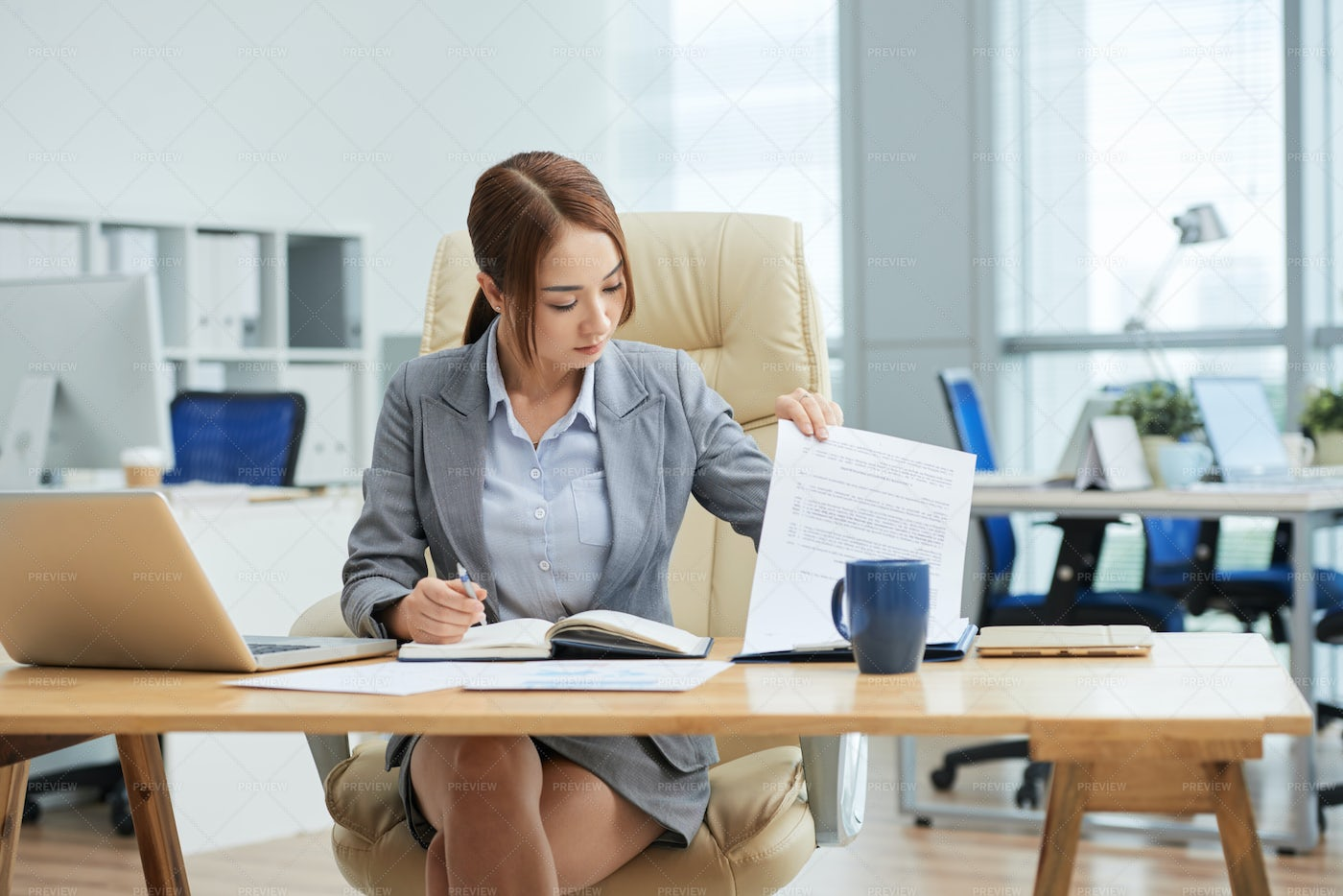 Young Businesswoman Working At Office: Stock Photos