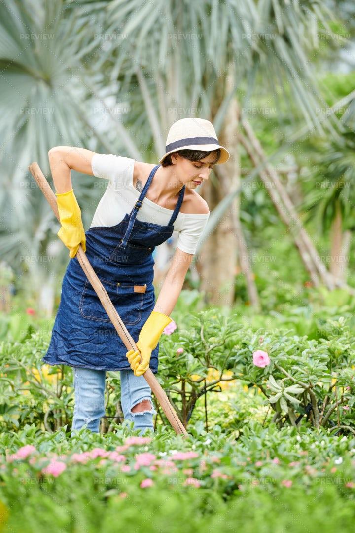 Woman Working In Flower Garden: Stock Photos